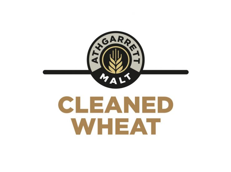 Premium Cleaned Irish Wheat