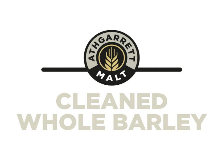 Premium Cleaned Irish Barley